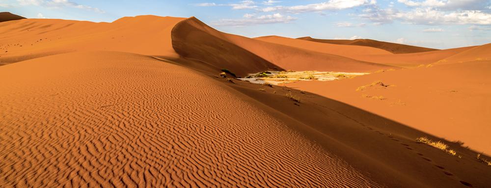 Die Sanddünen von Sossusvlei haben einen Sandsteinsockel aus dem präkambrischen Grundgebirge. Deswegen verändern sie sich anders als Wanderdünen nur in der Form, aber nicht wesentlich in der Position  Photo © 2016 Jürgen Wettke. All rights reserved.