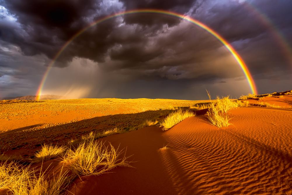 Namib Naukluft NP - Namibia, 2015  Photo © 2017 Stefan Forster.All rights reserved. www.stefanforster.com