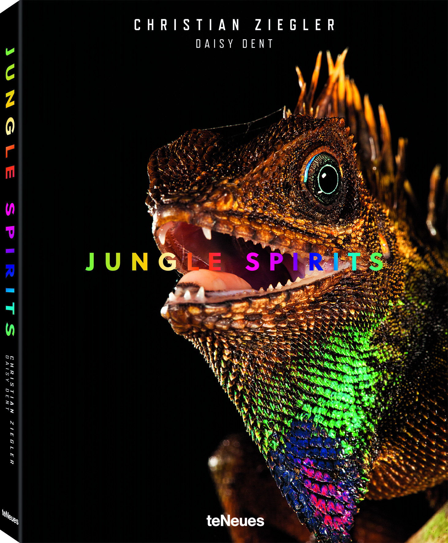 © Jungle Spirits by Christian Ziegler & Daisy Dent, published by teNeues, € 49,90, www.teneues.com , Bell's forest dragon (Gonocephalus bellii), Malaysia , Photo © 2017 Christian Ziegler. All rights reserved. www.christianziegler.photography