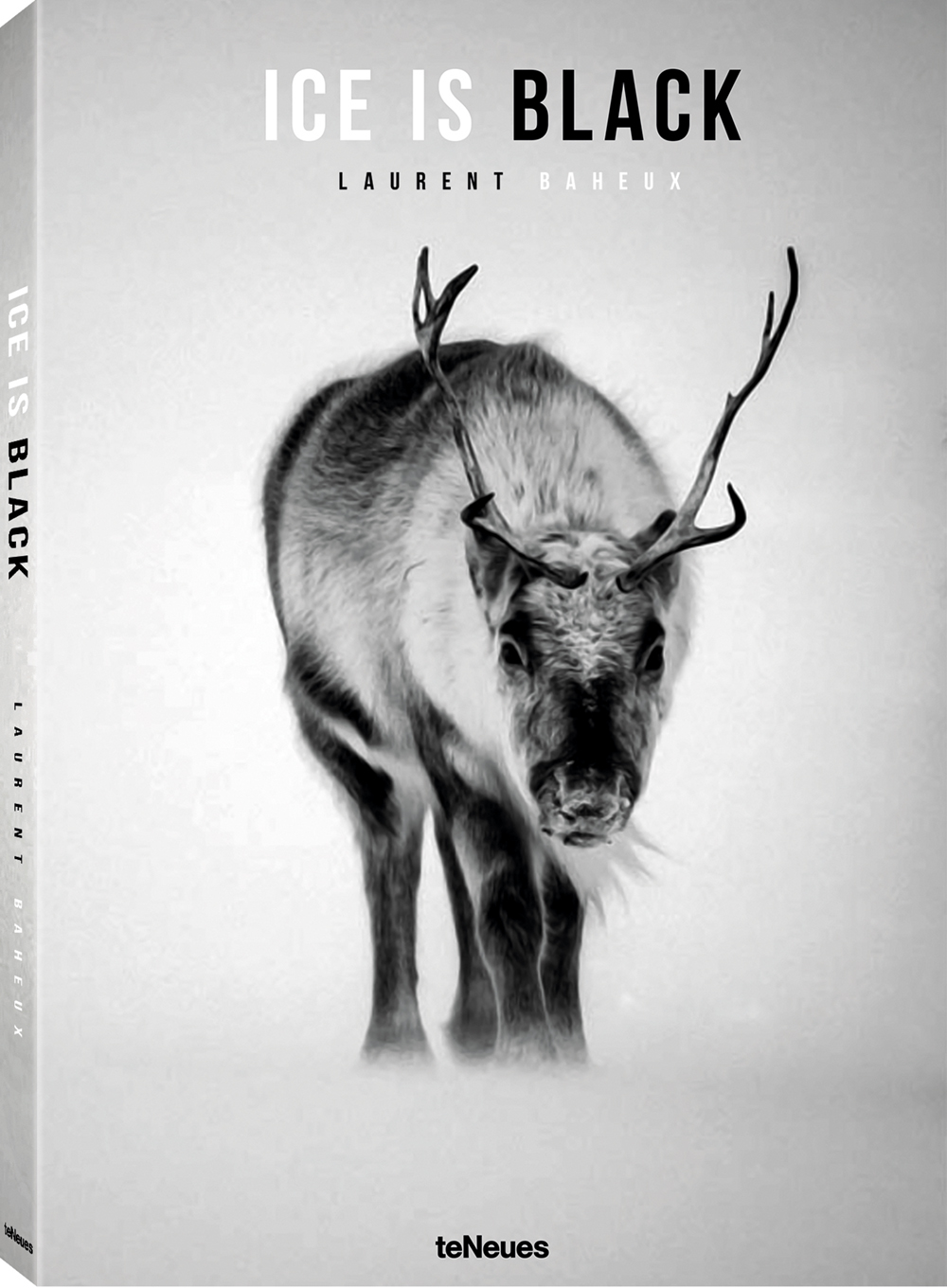 Ice is Black by Laurent Baheux, published by teNeues, € 59,90,  www.teneues.com ,  Reindeer through the snow, Svalbard 2014,  Photo © Laurent Baheux