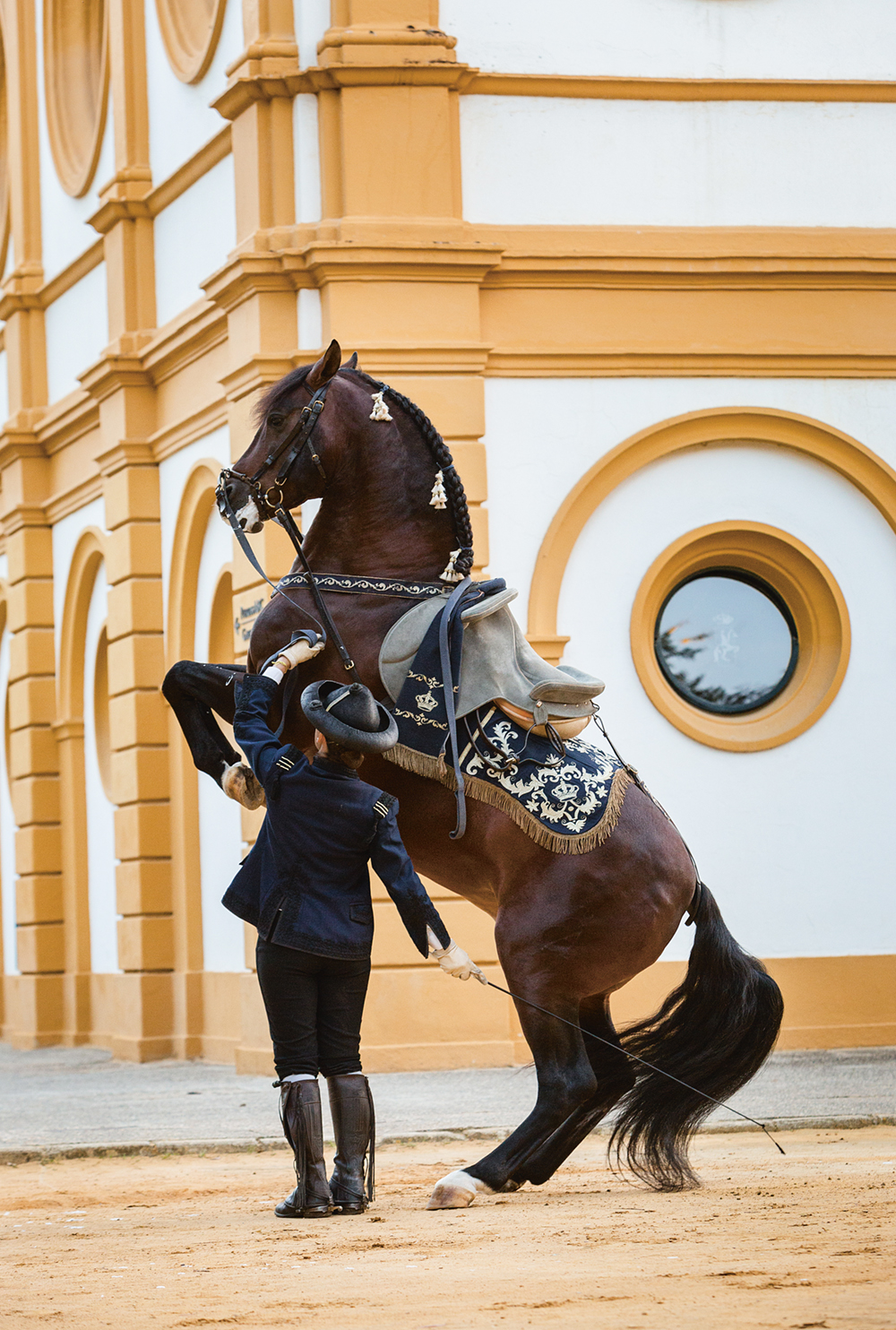 ROYAL ANDALUSIAN SCHOOL OF EQUESTRIAN ART, Jerez, Spain  Photo © Fundación Real Escuela Andaluza Del Arte Ecuestre