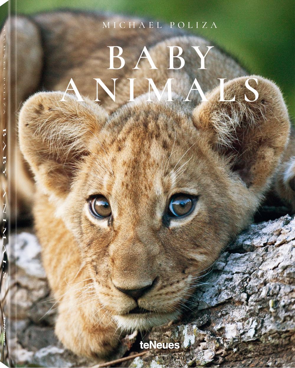 Für das Buch:   © Baby Animals von Michael Poliza, erschienen bei teNeues, € 14,99,   www.teneues.com