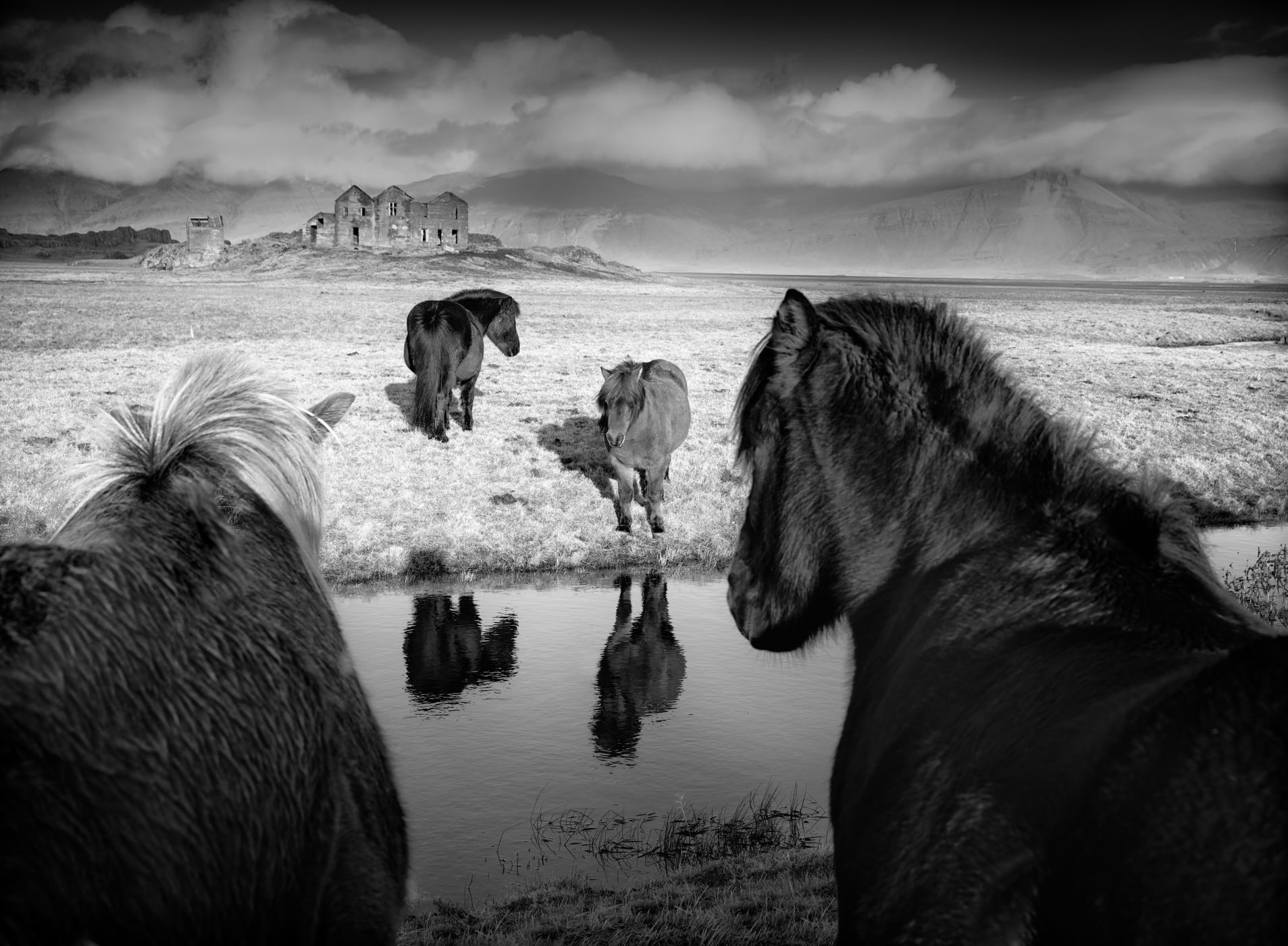 © Baerbel Brechtel, National Awards, Winner, Germany, 2019 Sony World Photography Awards