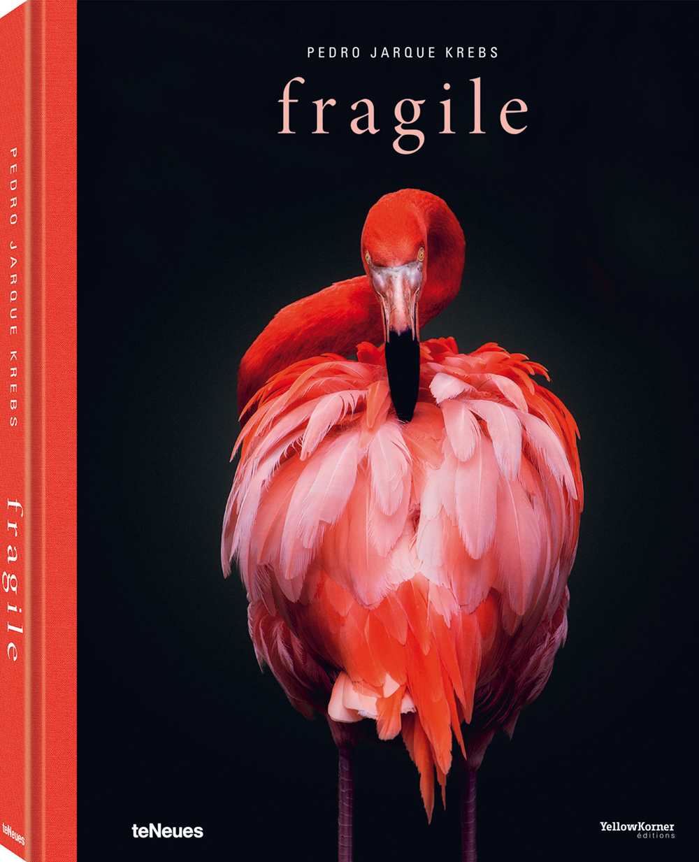 © fragile by Pedro Jarque Krebs, published by teNeues, € 50,  www.teneues.com ,  American flamingo , Photo © Pedro Jarque Krebs. All rights reserved.