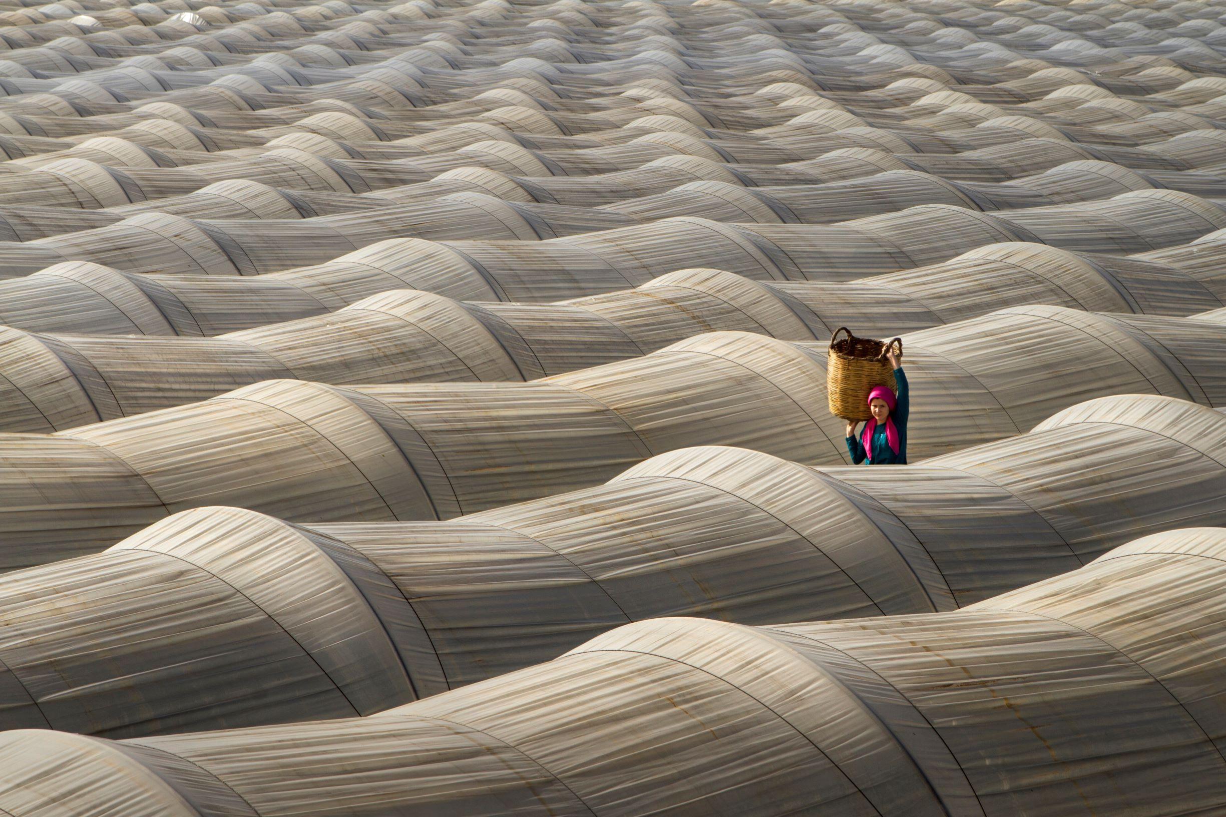 © CEWE/ Leyla Emektar, Turkey