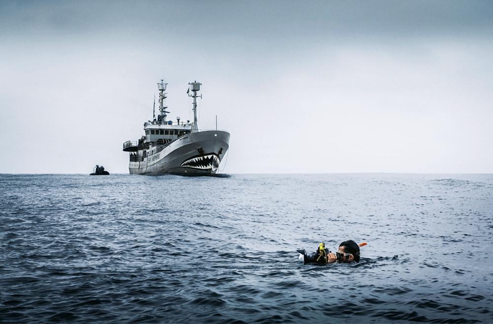 Piraten zum Schutz unserer Ozeane, Helden: Sea Shepherd - Aktivisten, Das berühmte Schiff Bob Barker war für die Operationen Albacore 2 in Gabun stationiert. Von hier aus brach der ehemalige Walfänger mit dem aufgemalten Haifischmaul regelmäßig zu seinen Patrouillen auf, um illegale Fischerei zu bekämpfen  Photo © Alejandra Potter Gimeno