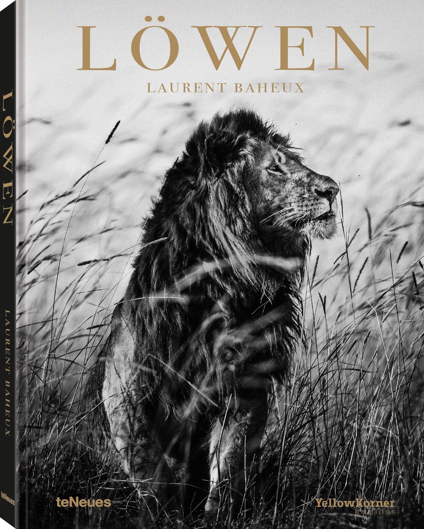 © Löwen von Laurent Baheux, erschienen bei teNeues, € 40,  www.teneues.com ,  Lion in the grass I, Kenya 2013,  Photo © 2019 Laurent Baheux. Alle Rechte vorbehalten.