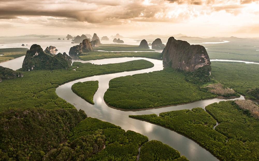 Mangrovenwälder in der Bucht von Phang Nga, Thailand   Photo © 2019 Michael Poliza. All rights reserved.  www.michaelpoliza.com ,  www.michaelpolizatravel.com