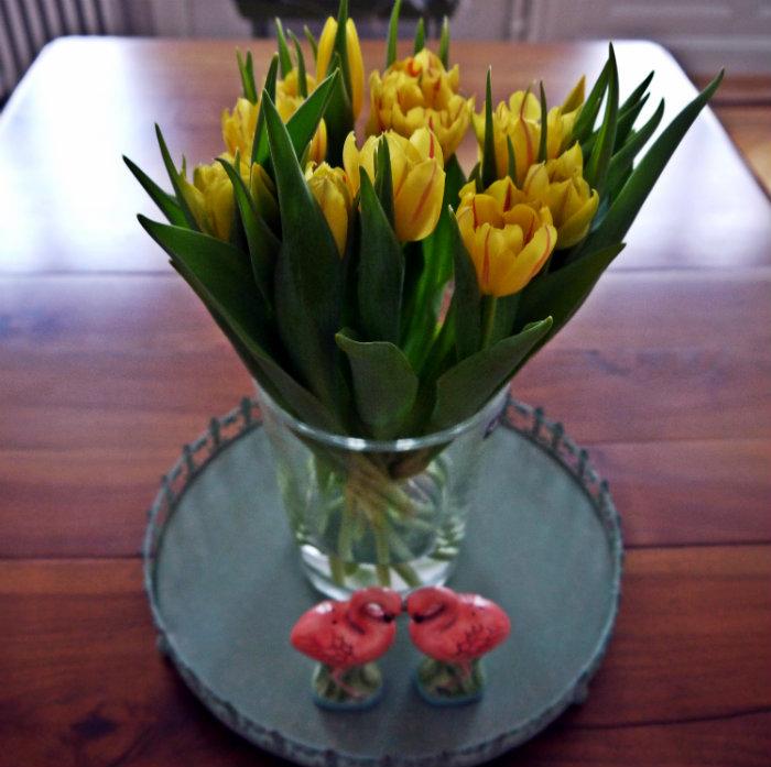 Tulpen gelb.jpg