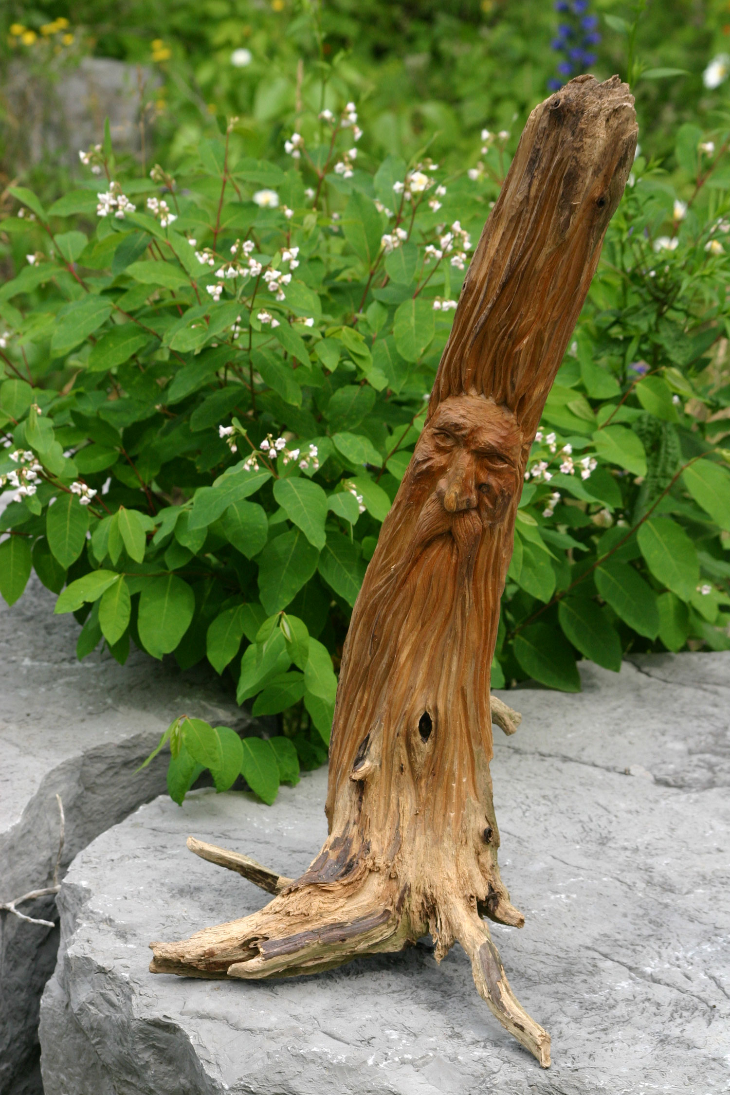 The Wizard Wood Carving