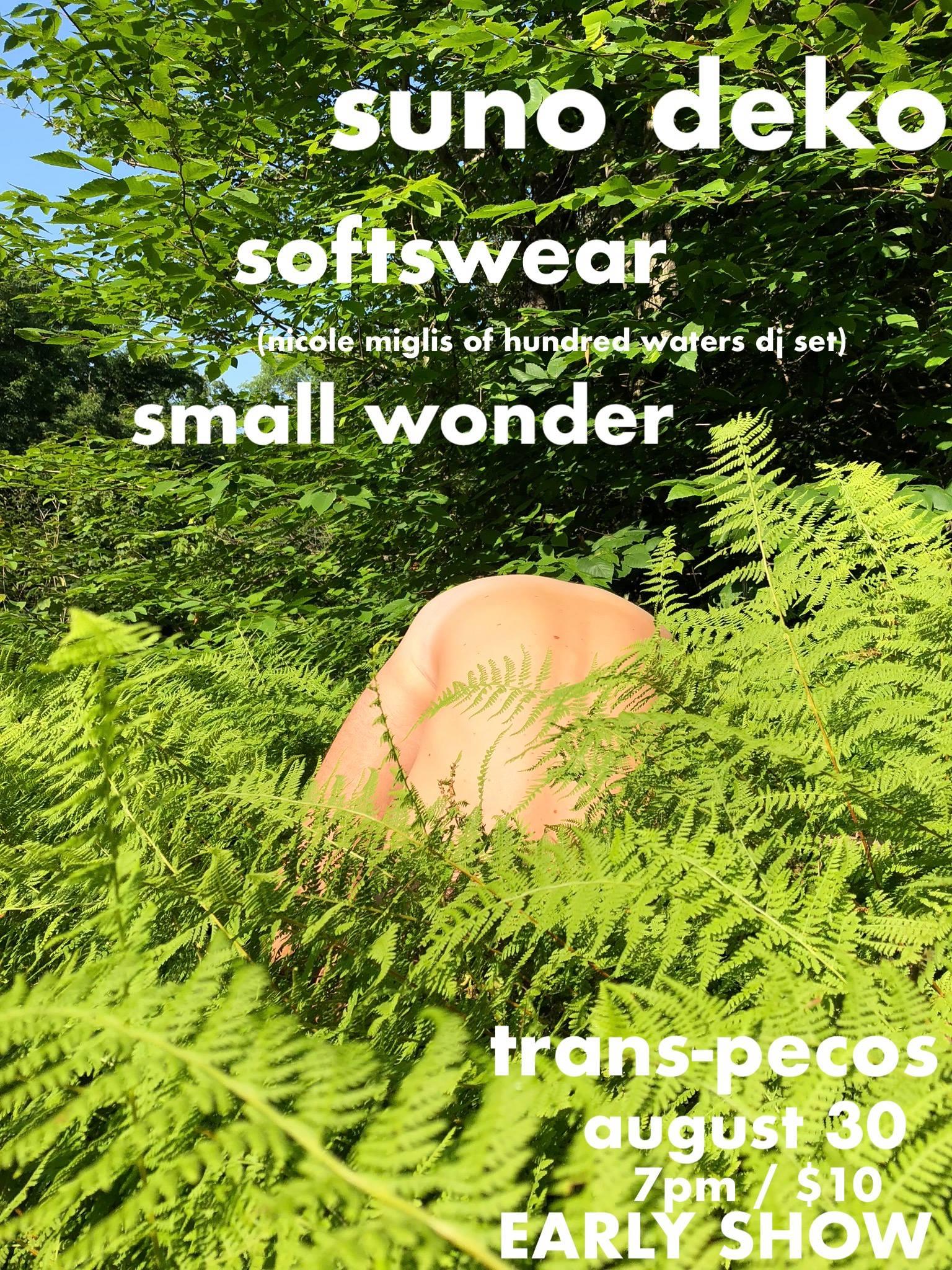 !!!!!!!!!EARLY SHOW!!!!!!!!!  suno deko ~a mood~  www.sunodeko.com   softswear ~nic miglis of 100waters dj moment~  https://omfgdogs.com/   small wonder ~diy royalty~  smallwonder.bandcamp.com