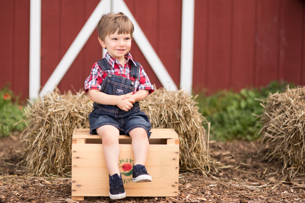 farm-barnyard-red-barn-toddler-birthday-party-boston.jpg