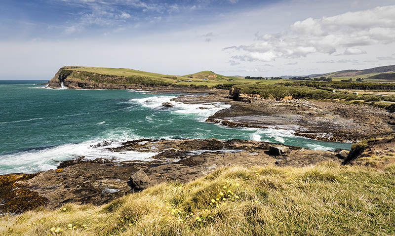 Catlins Coast S.I NZ