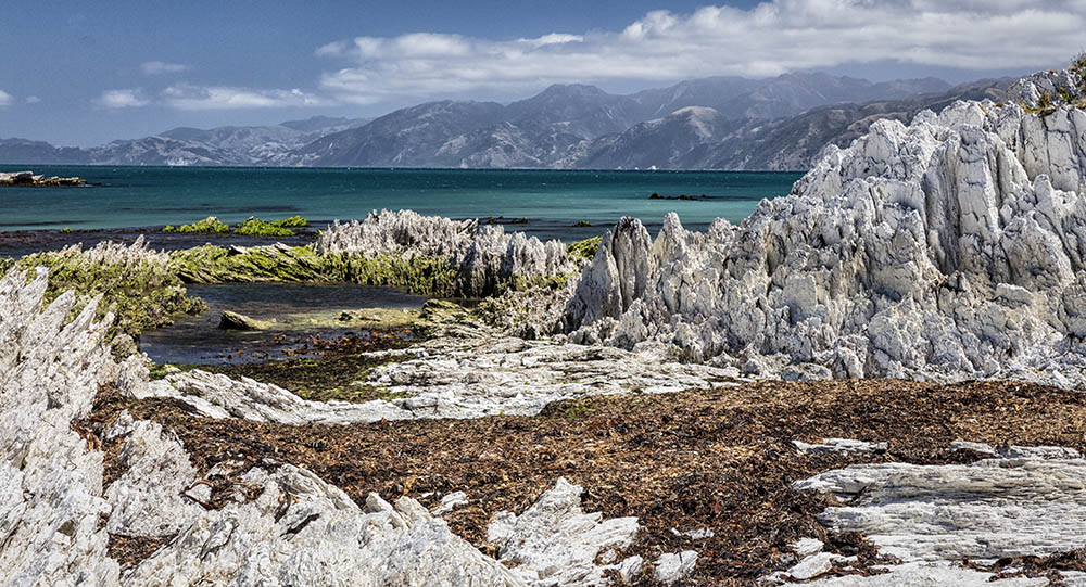 Kaikoura Coast after the Earthquake