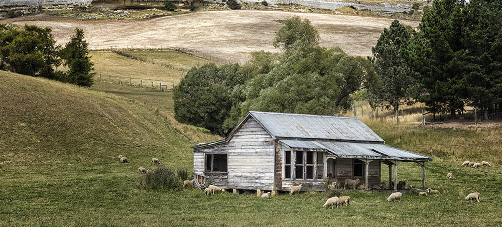 Sheep House Otago NZ