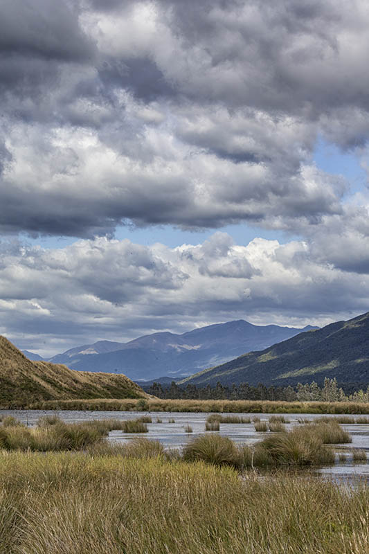 Wetlands near Lake the Anau