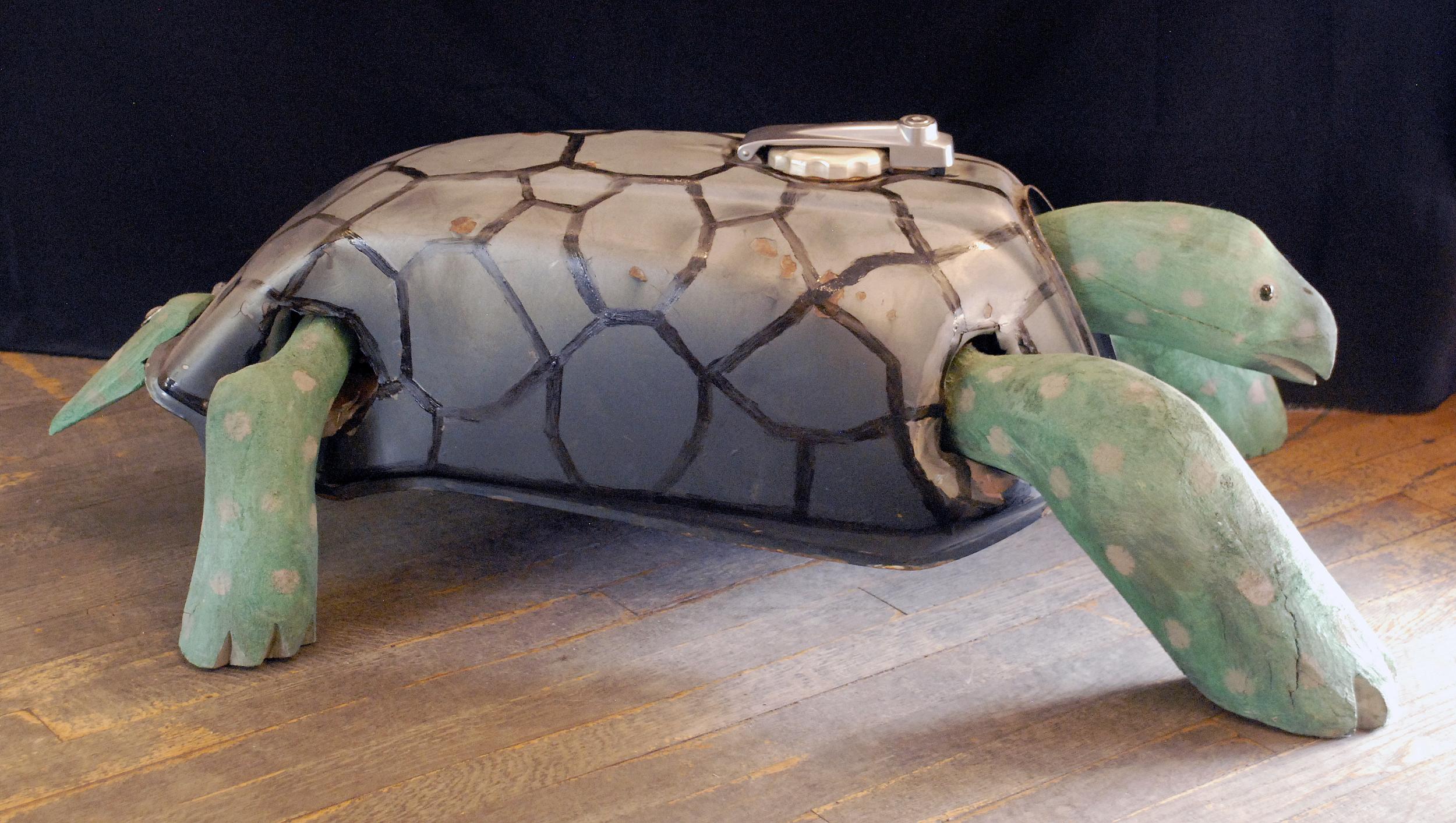 Large Turtle.jpg
