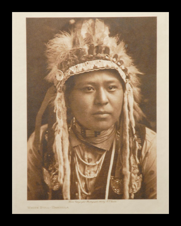 """""""White Bull-Umatilla"""" 1910 Vol.8 Vellum Print, Vintage Photogravure"""