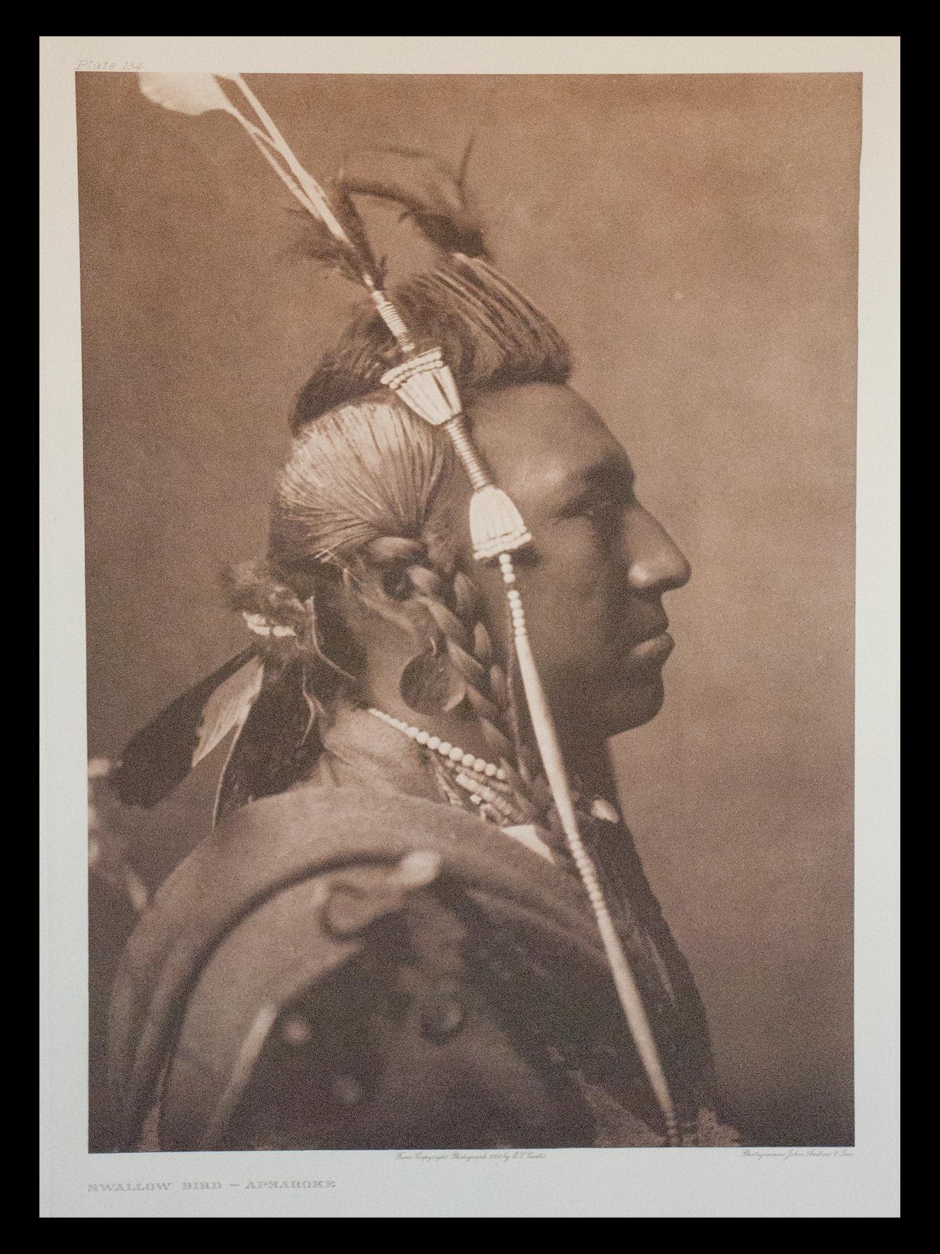 "Plate #134 ""Swallow Bird - Apsaroke"" 1908 Portfolio 4"