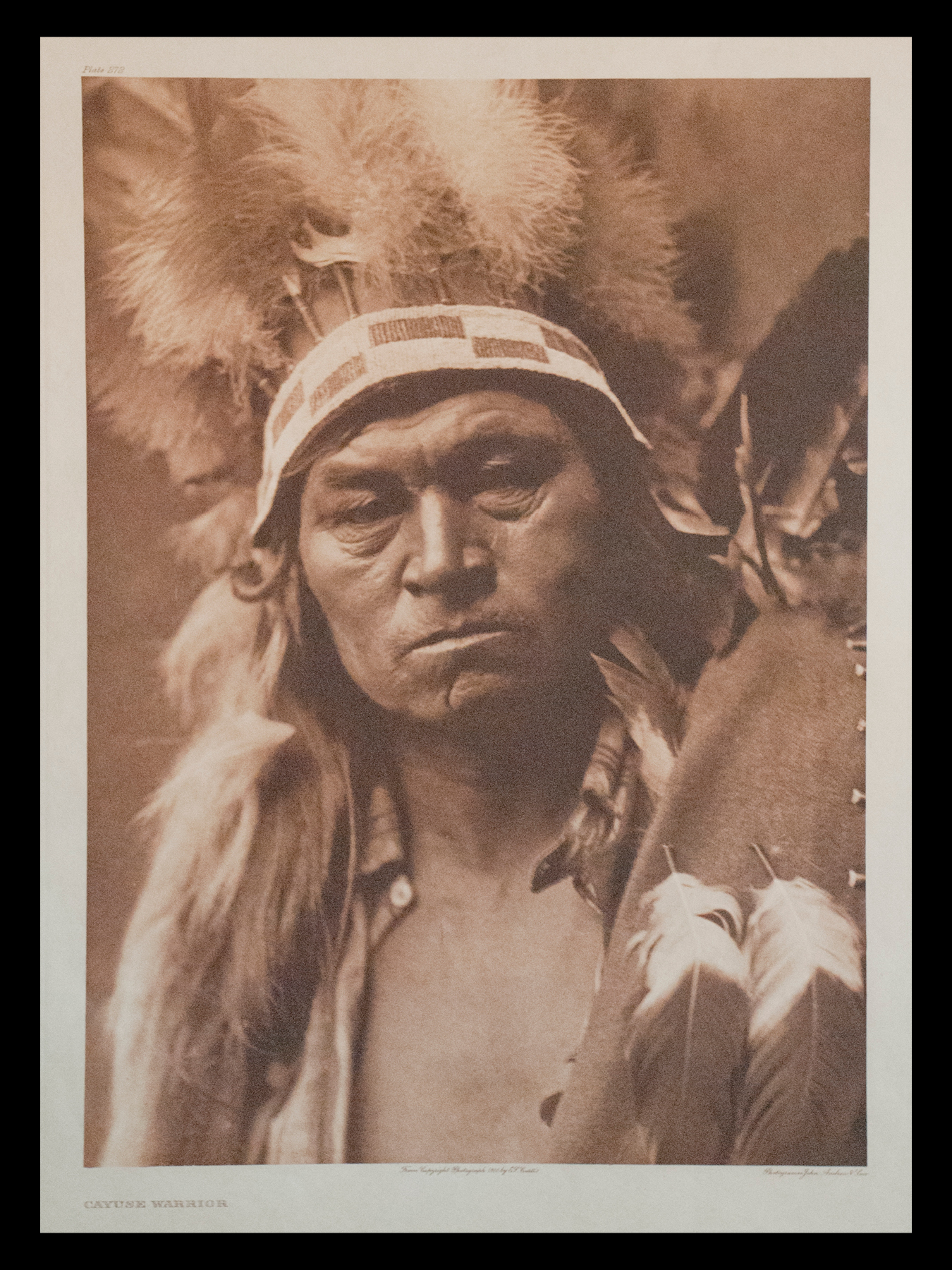 "Plate #272 ""Cayuse Warrior"" 1910 Portfolio 8"