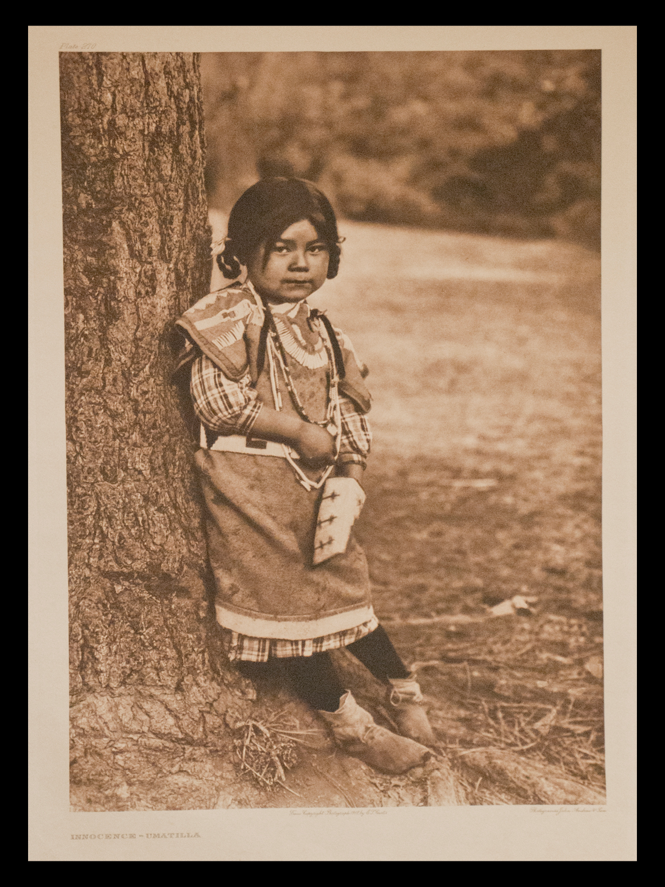 "Plate #270 ""Innocence-Umatilla"" 1910 Portfolio 8"