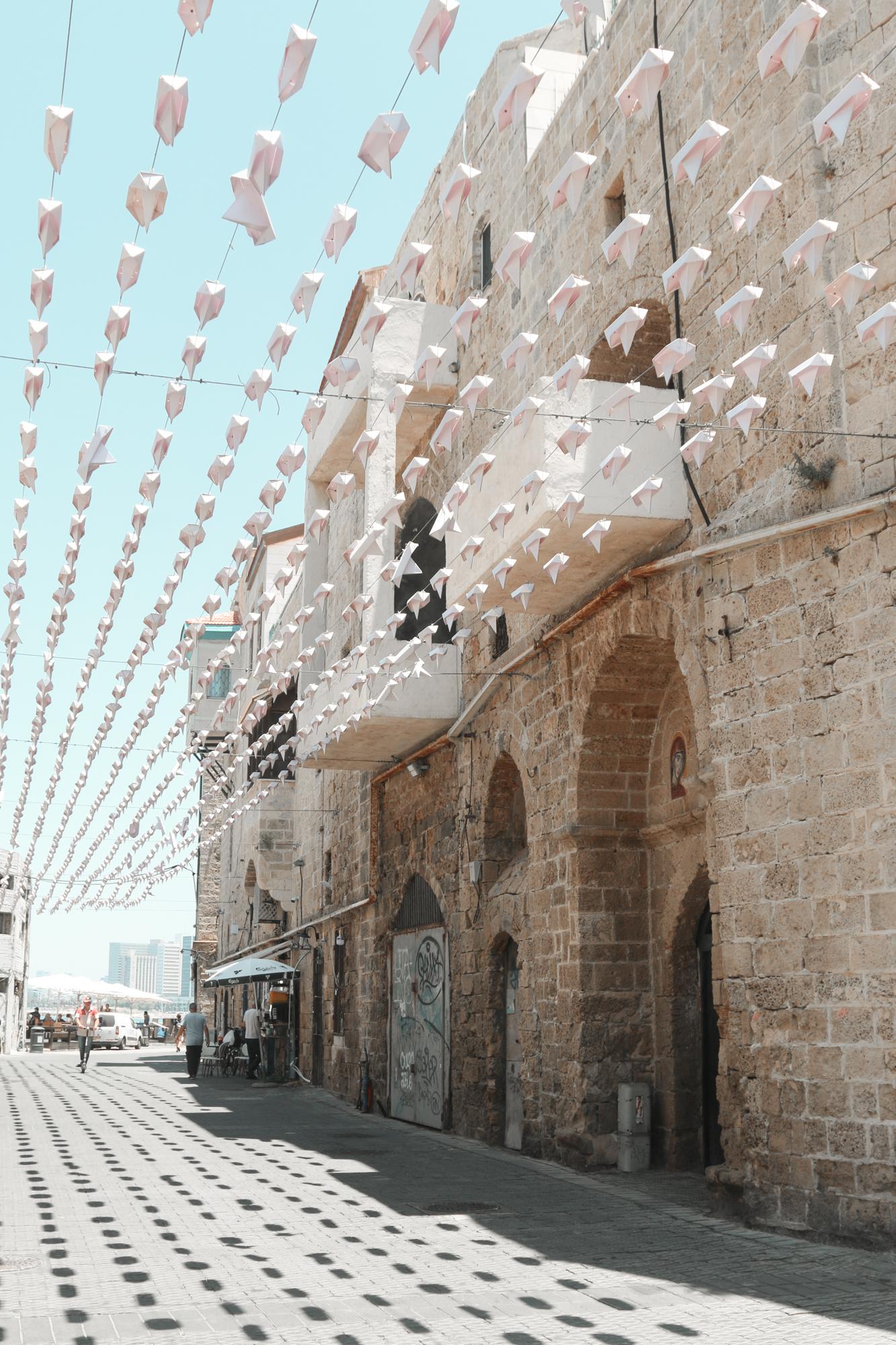 israel-187.jpg