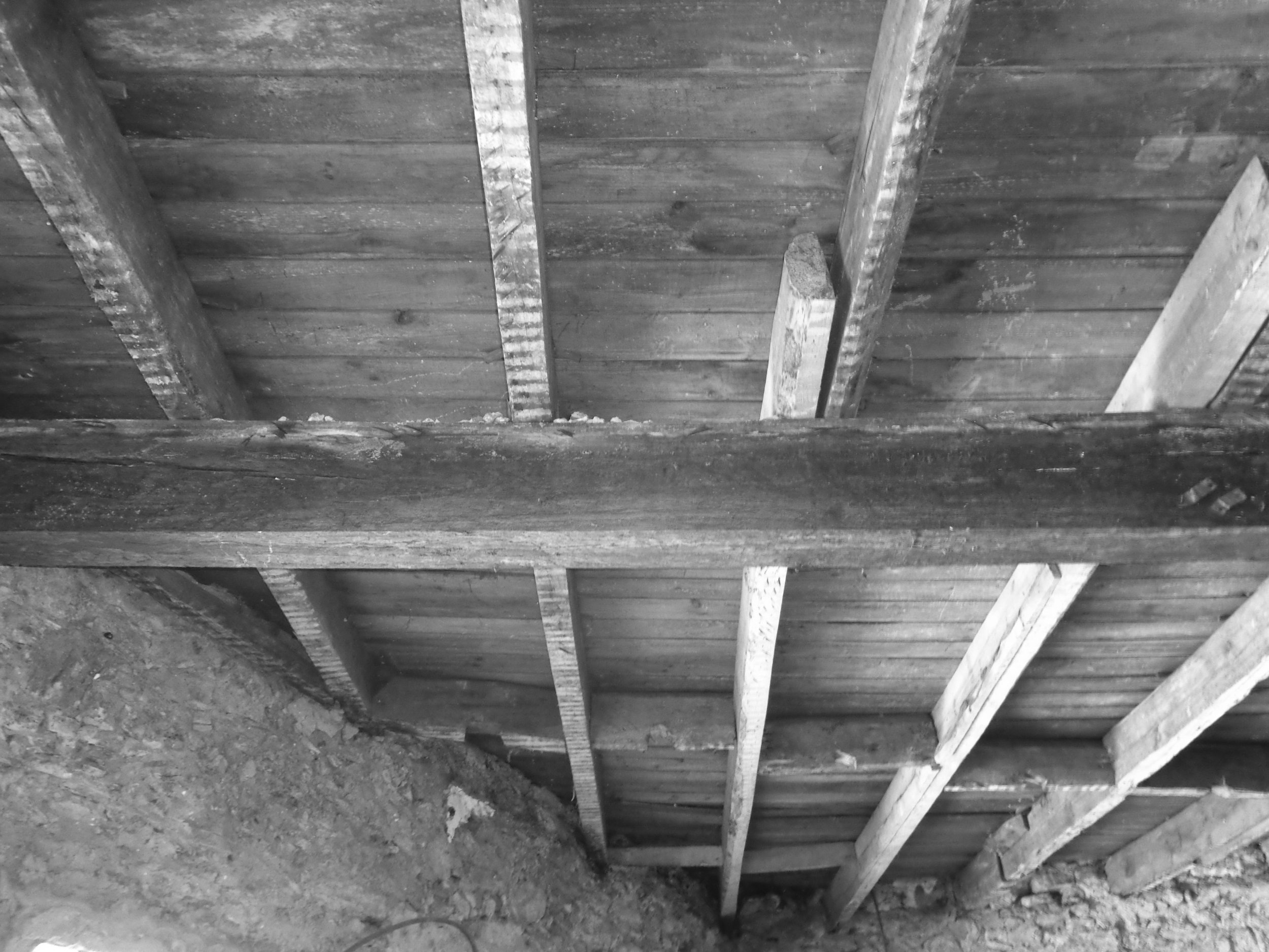 Restaurante Sabor - EVA evolutionary architecture - são joão da madeira - remodelação - arquitectos porto (6).jpg