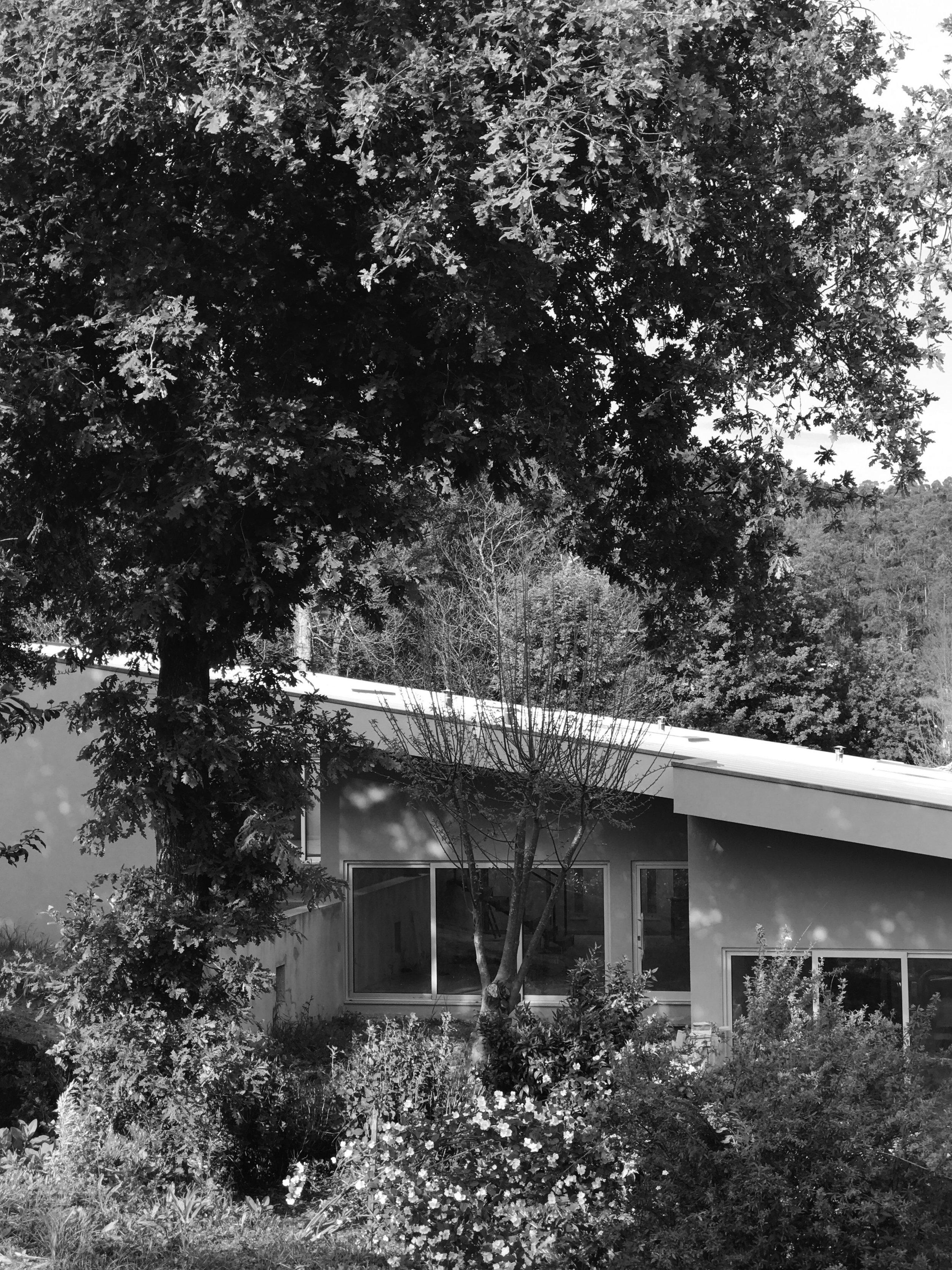 Moradia S+N - arquitectura - arquitectos - porto - oliveira de azemeis - construção - projecto - eva evolutionary architecture (49).jpg