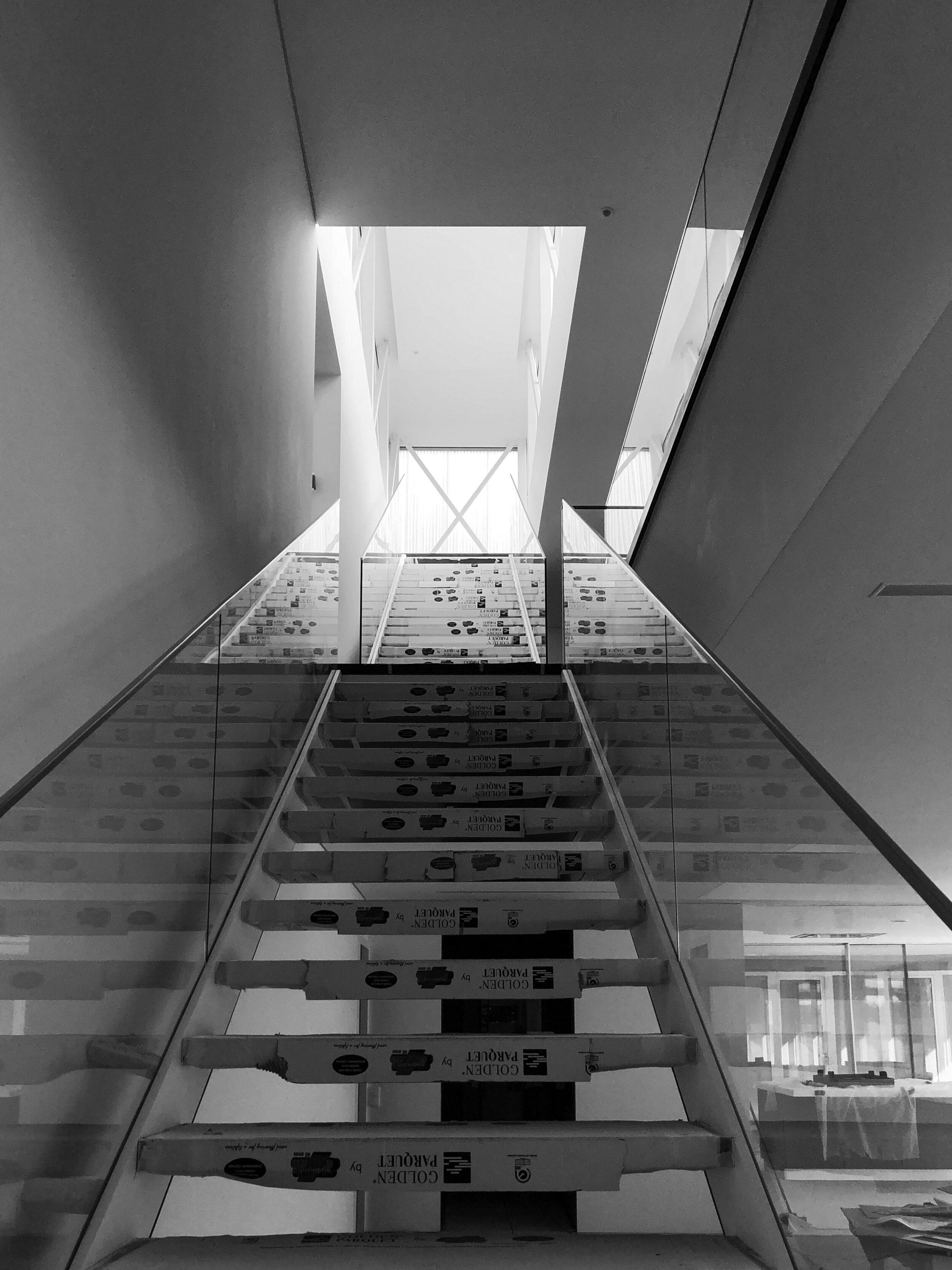 Moradia Alfazema - EVA evolutionary architecture - arquitetura - habitação (17).jpg