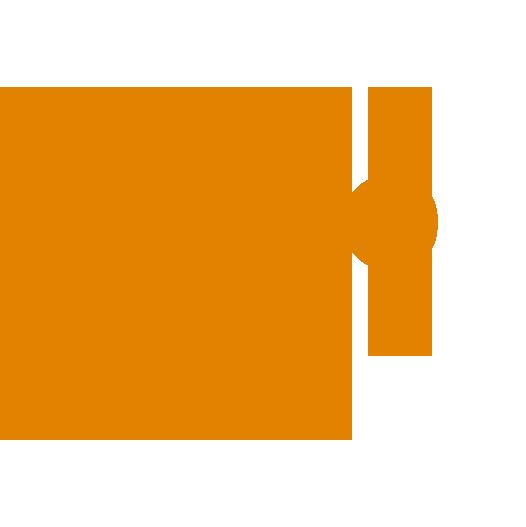 MOMOORANGE.png