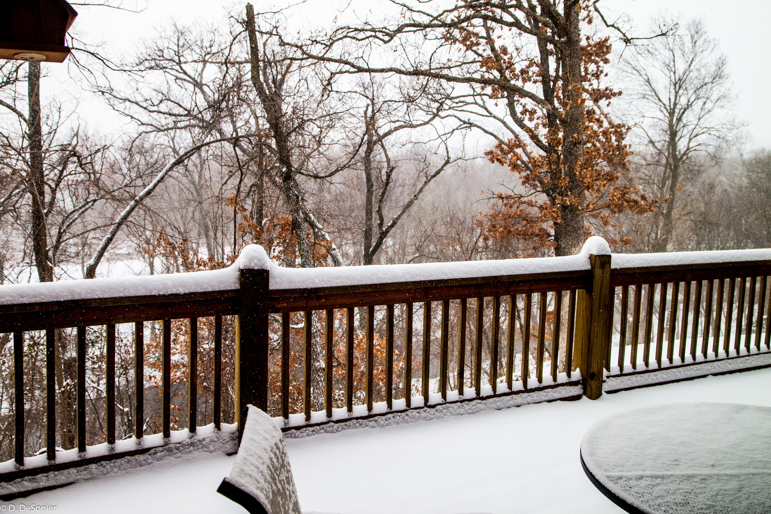 The view from our back deck.