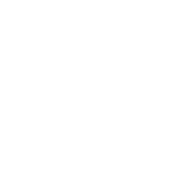 White Balloon Watermark, Transparent.png
