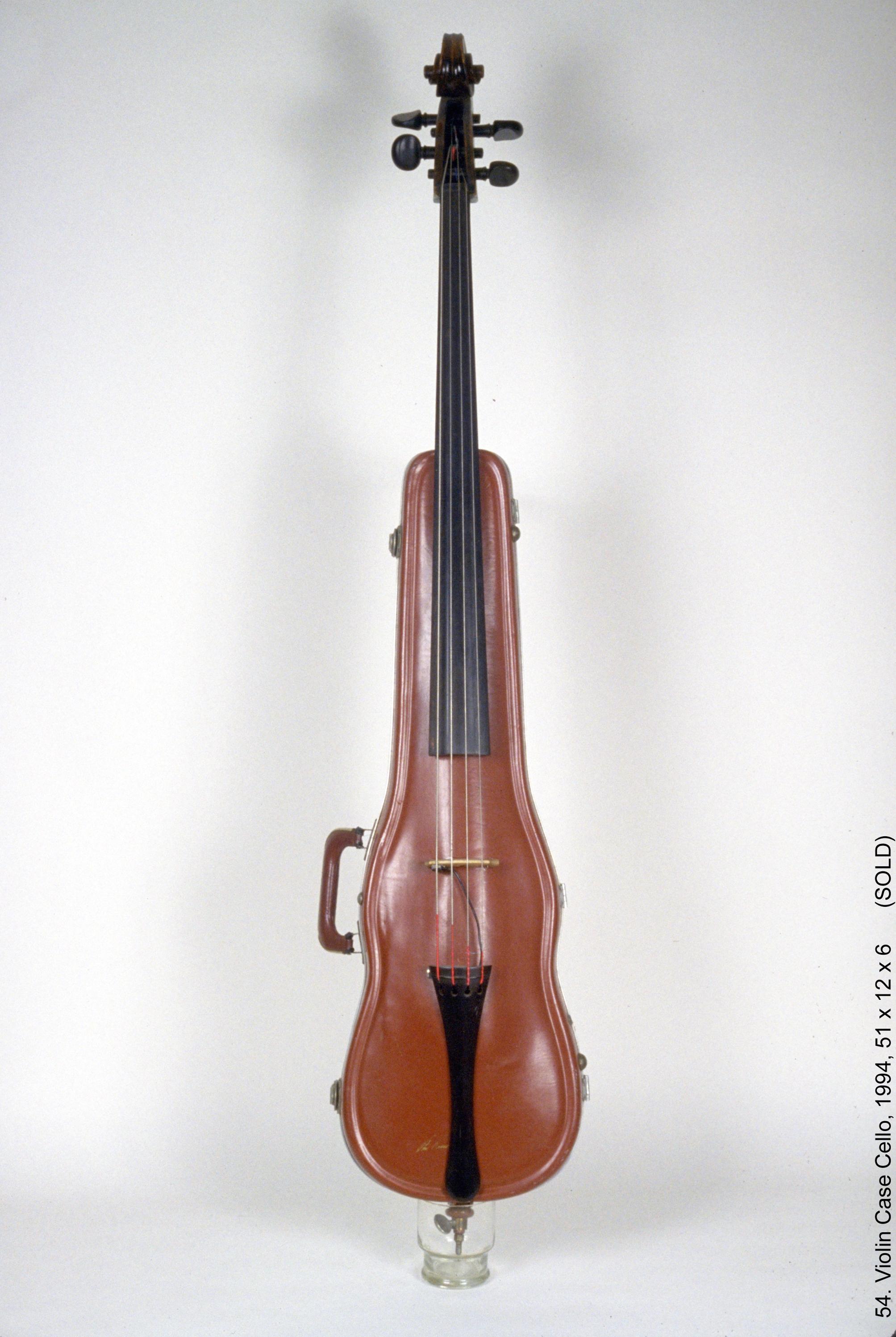 54 Violin Case Cello wt.jpg