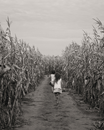 Anne Connor, Children of the Corn