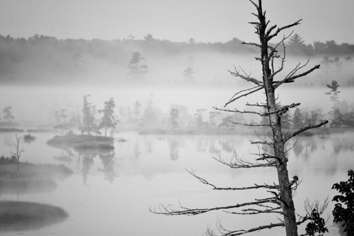 Morning - Madeline Island, by Peter Hewson. All rights reserved.