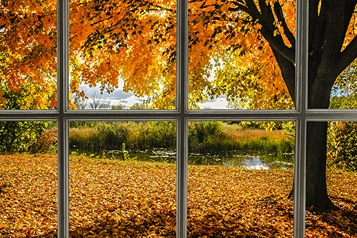 Fall Window, by Paul McMahon. All rights reserved.