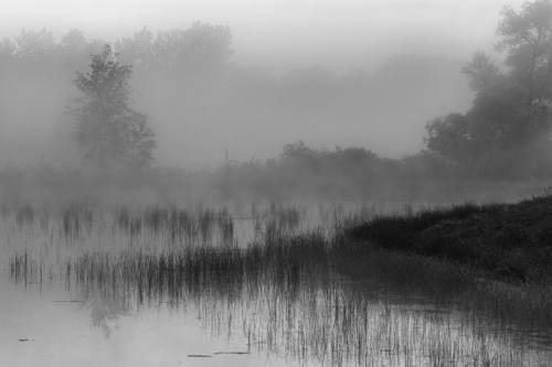 Cherokee Marsh, by Jim Sterne. All rights reserved.