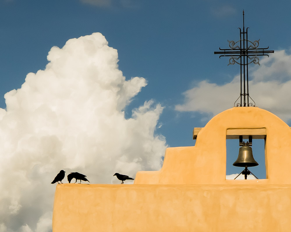 Crows, Santa Fe by Robin Downs.  All Rights reserved.