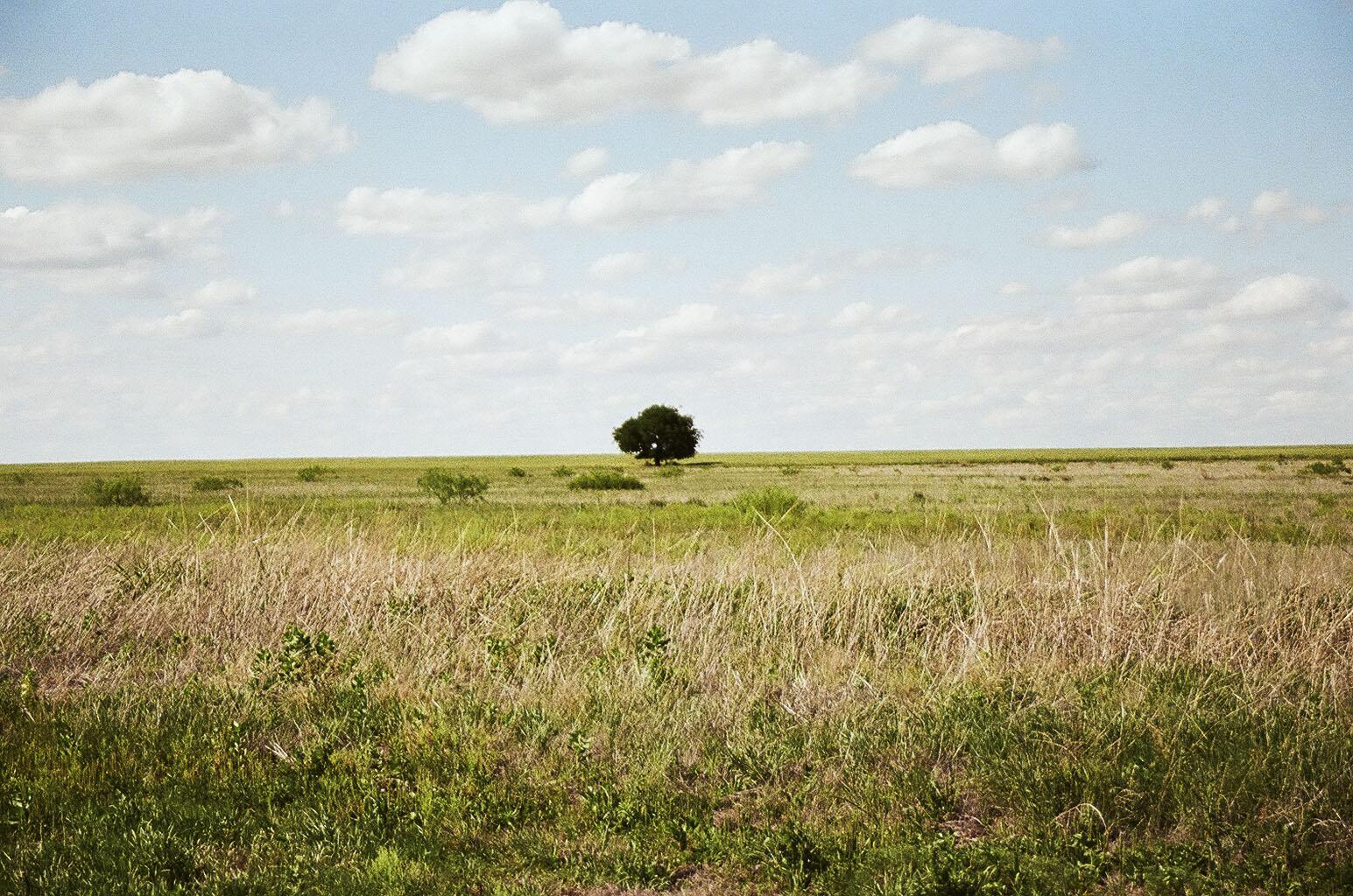Nebraska, 2013