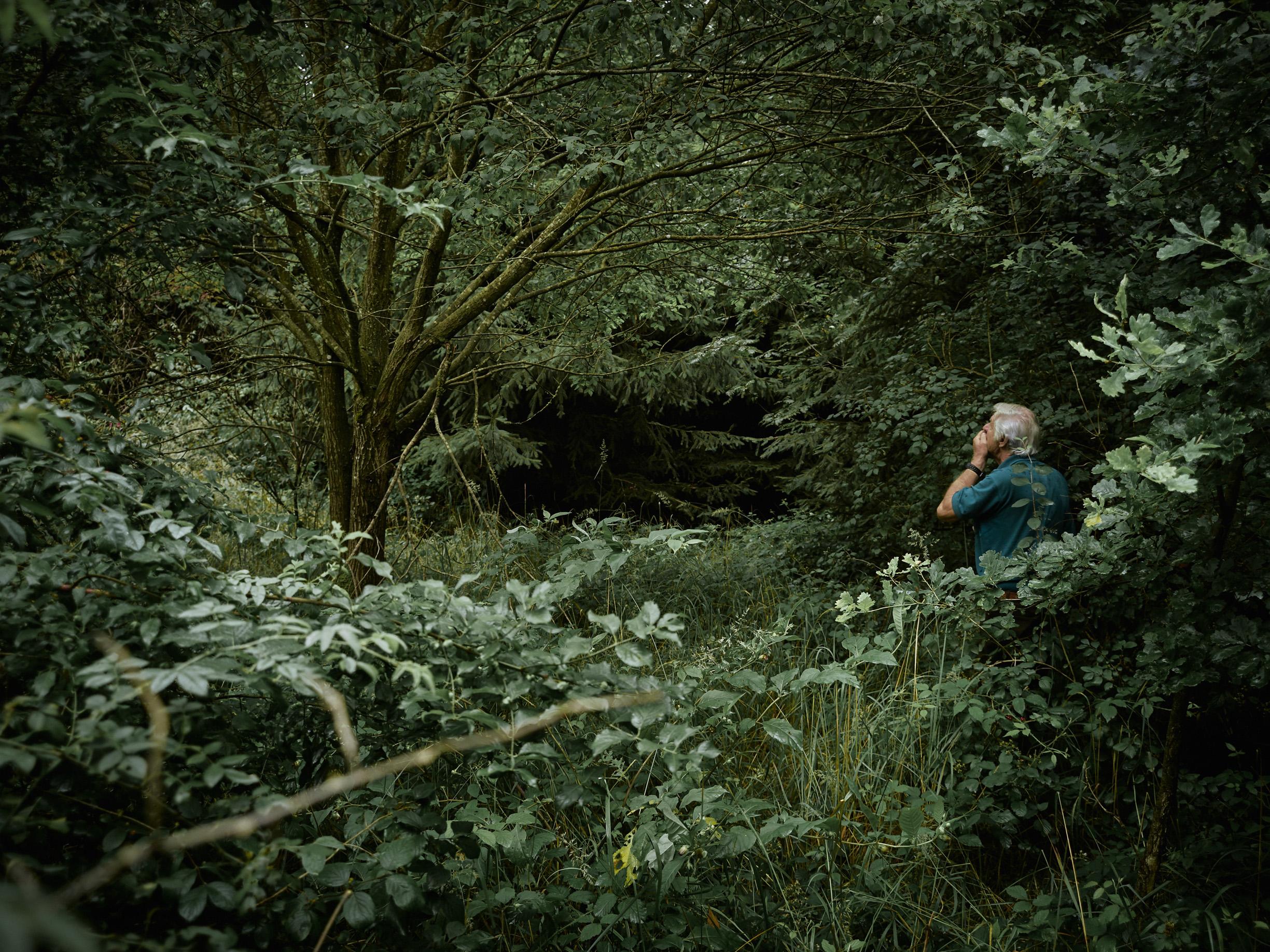 Tod im Paradies   Das Bild von Mehari am Baum geht Kurt Gröger nicht mehr aus dem Kopf. Er fand ihn kurze Zeit nach seinem Tod. Selbstmord durch Erhängen.