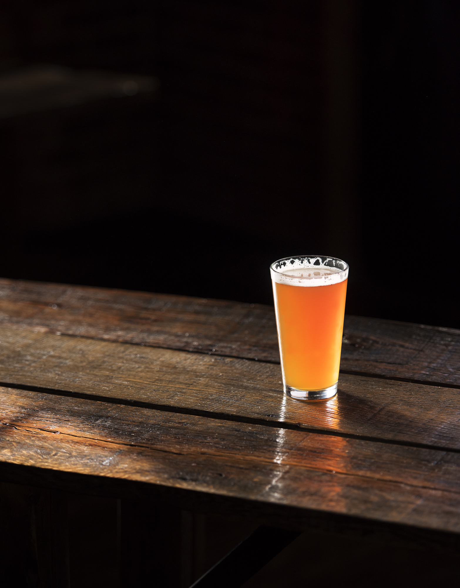 Daught beer at Habitat Brewing & Tavern in Asheville, NC | Photography back Jack Sorokin for The Mountain Xpress Newspaper