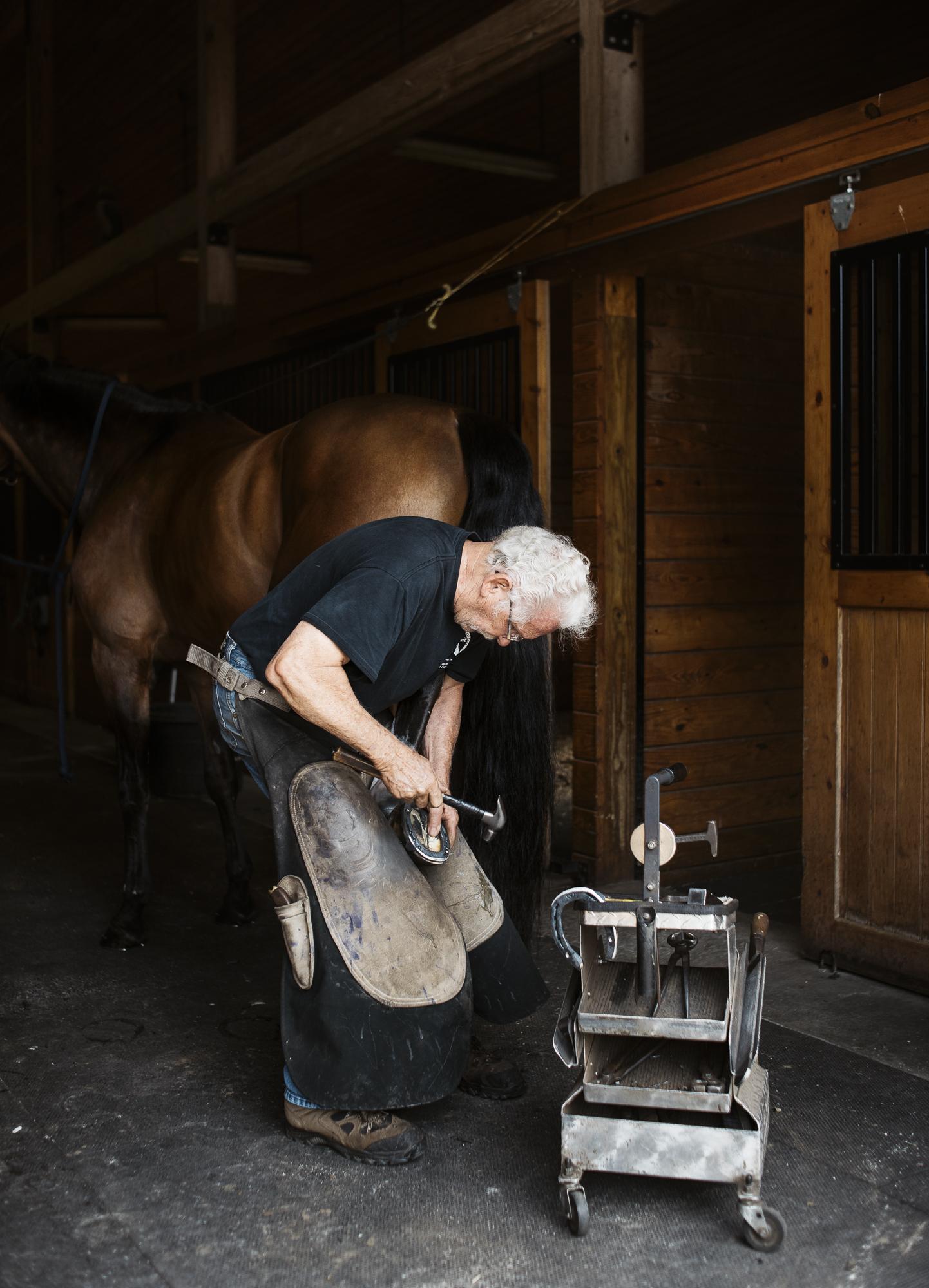 horse farrier jack sorokin photography asheville new york north salem barn horse portrait man horseshoer