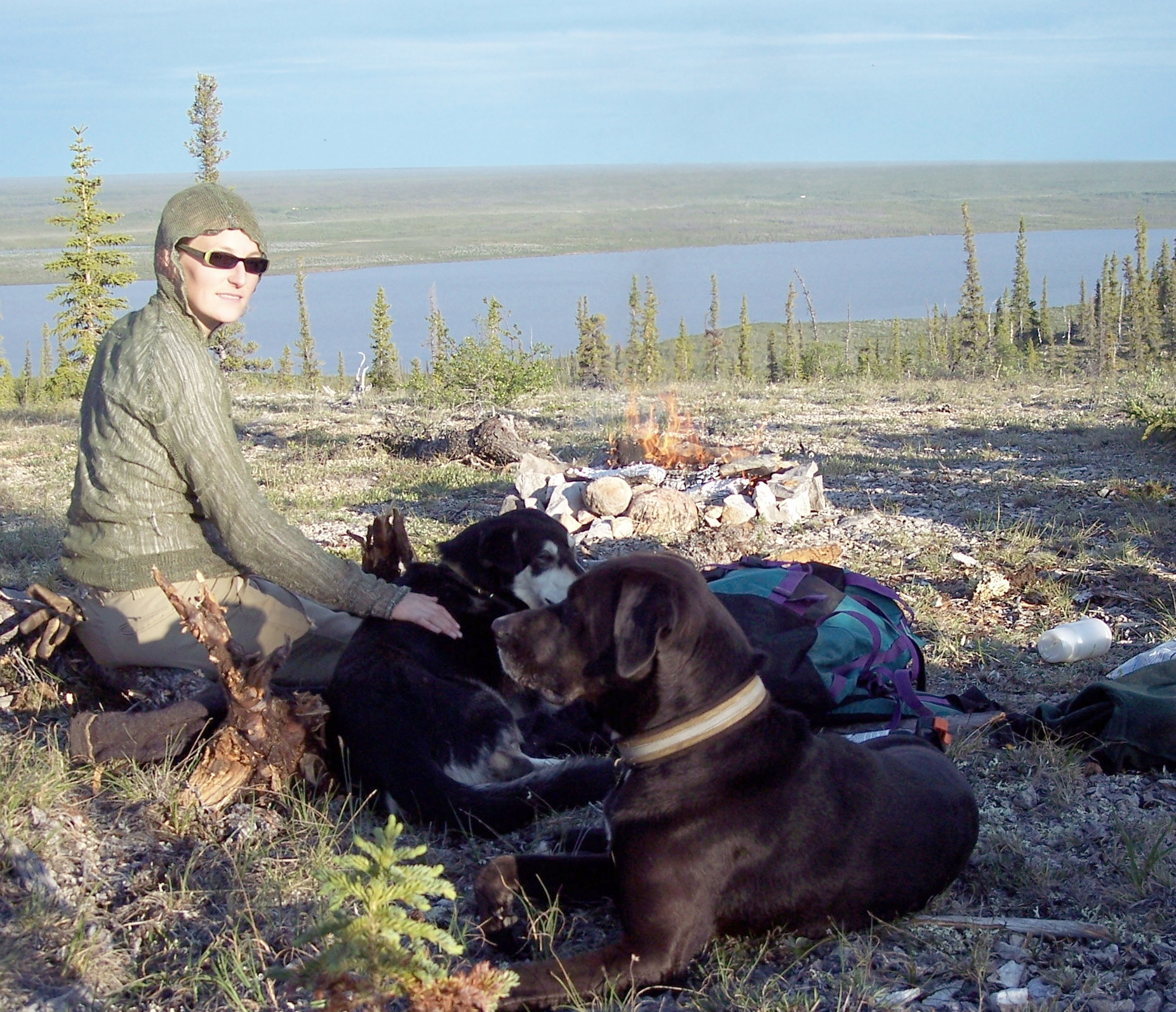 My first dog (front) after she had chased away a bear while we were camping in the Arctic. Those rose-coloured spectacles are feeling pretty rosy right now.