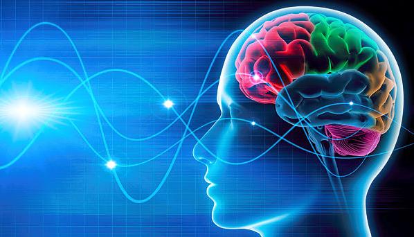 Brain-598x342.png