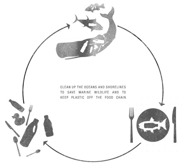 the cycle.jpg