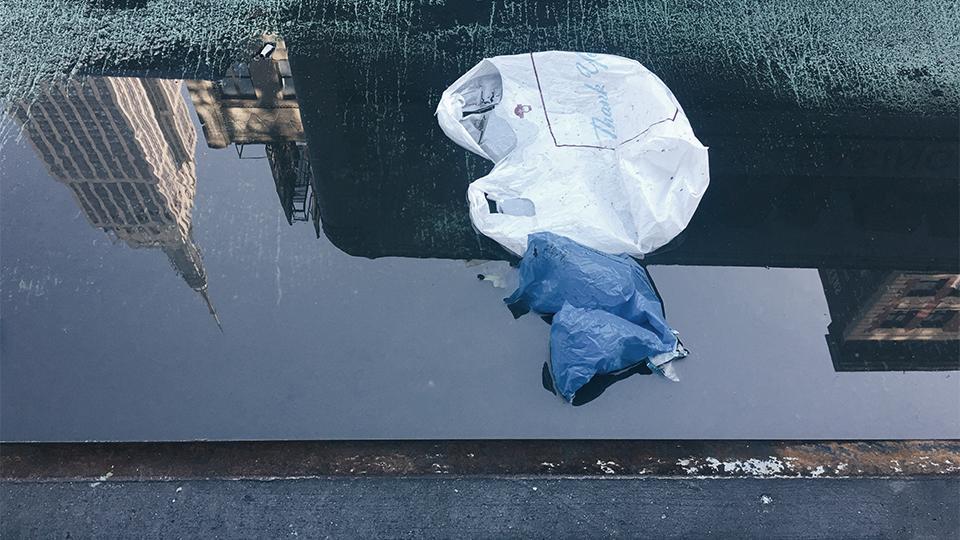 Plastic bags of New York