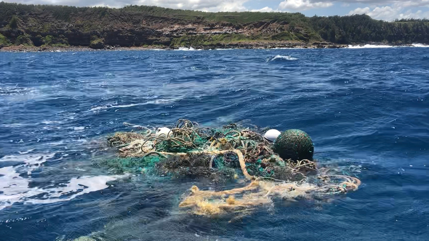 The ghost net and tracker (white buoy with blue stripe) were finally located by Parley and Love the Sea off the north shore of Maui.
