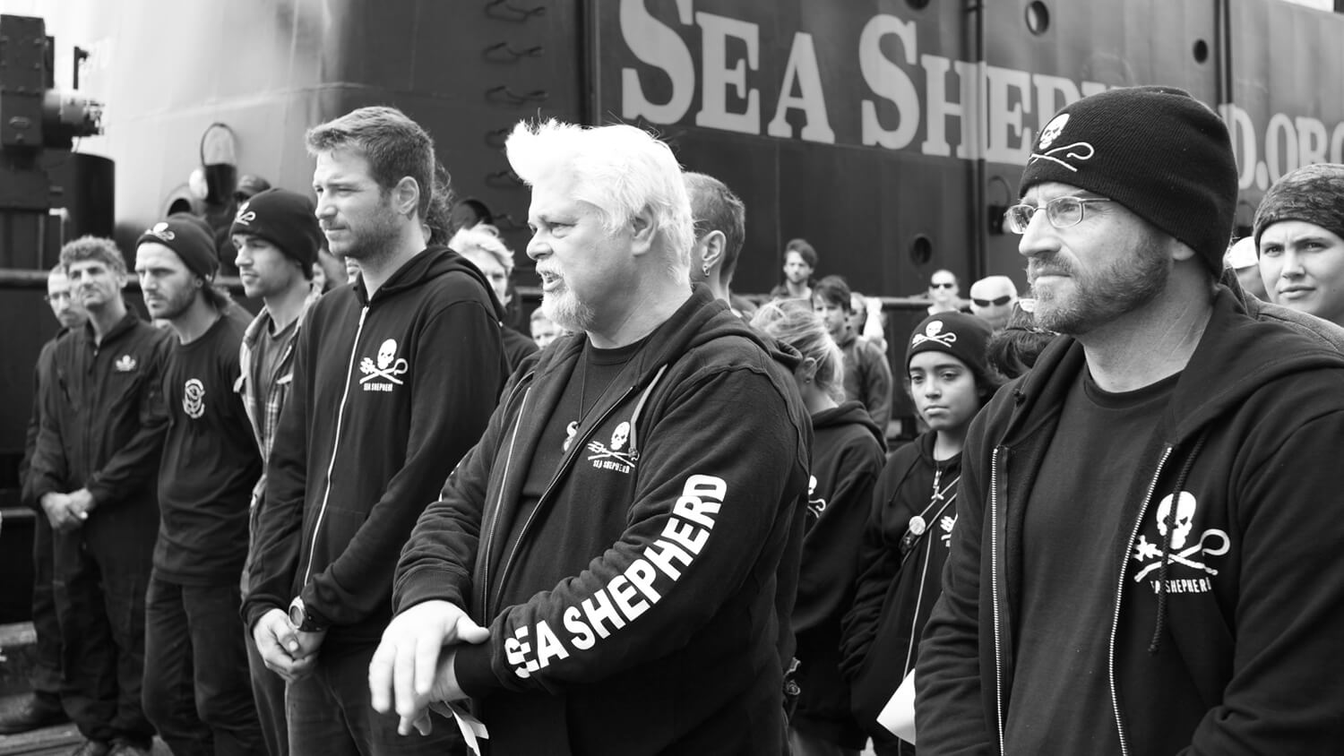 Courtesy of Sea Shepherd