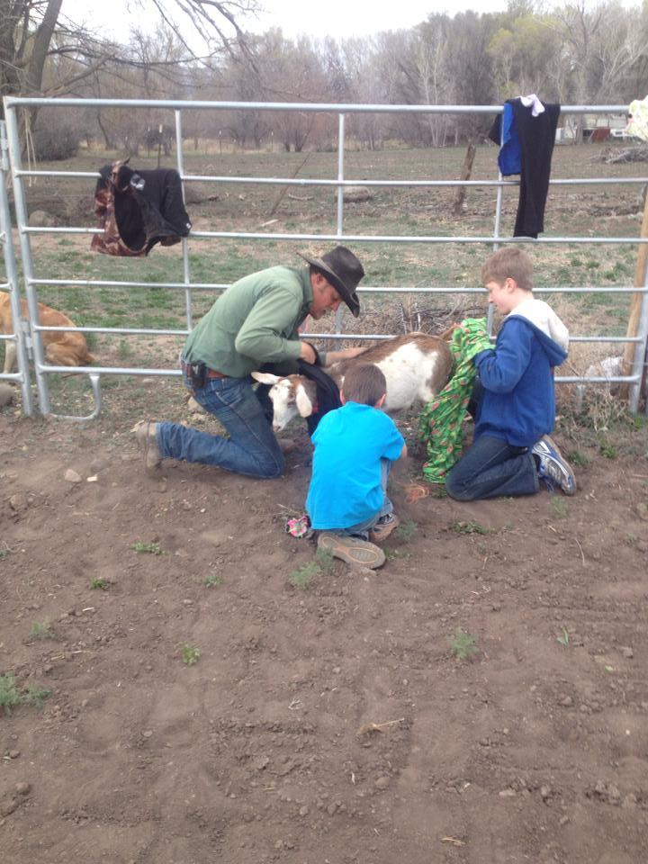 goatdressing2.jpg