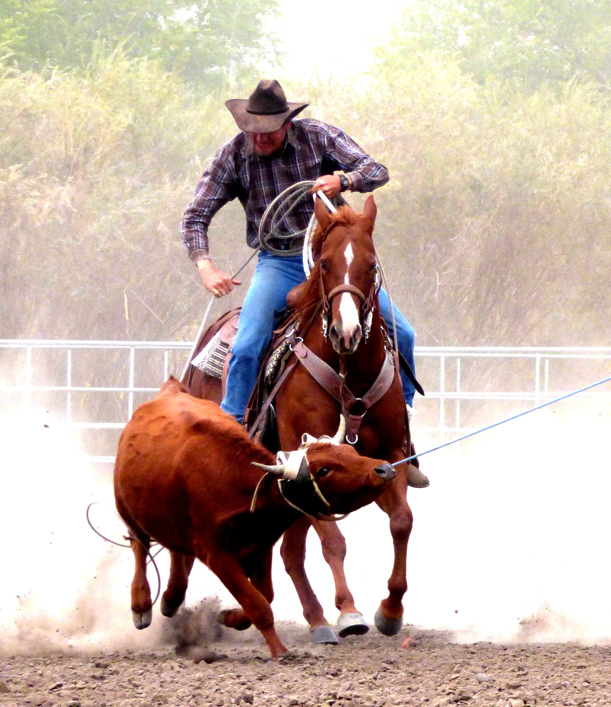 Cowboy Pastor